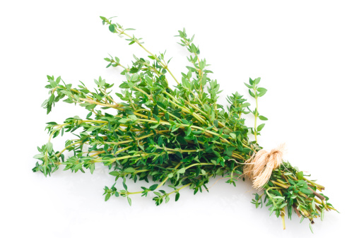 Thyme「Fresh thyme bunch tied up shot on white backdrop」:スマホ壁紙(1)
