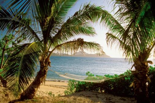 Hammock「Hammock between two palm trees, Mamanuca Group Resort Beach, Tokoriki Island, Fiji」:スマホ壁紙(18)