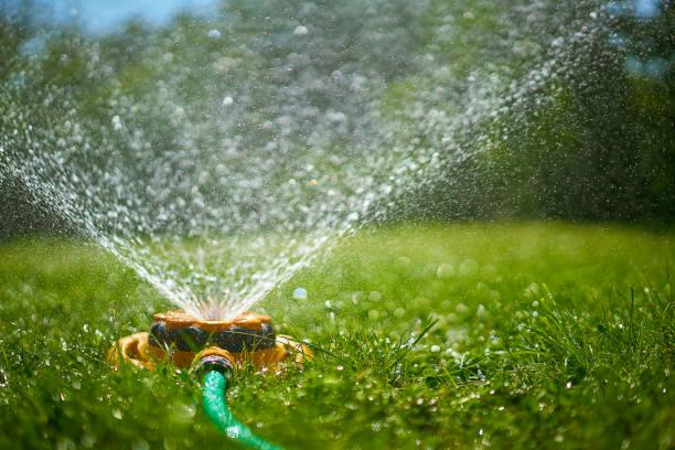 Surface level view of backyard sprinkler spraying:スマホ壁紙(壁紙.com)