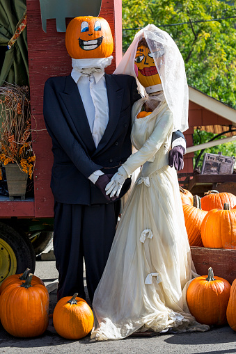 ハロウィン「Halloween decoration, dressed up mannequins as a married couple with painted pumpkin heads surrounded by pumpkins」:スマホ壁紙(16)