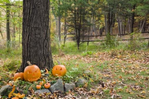 ハロウィン「Halloween decorations」:スマホ壁紙(15)