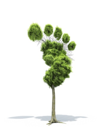 Lumber Industry「Carbon Footprint」:スマホ壁紙(3)