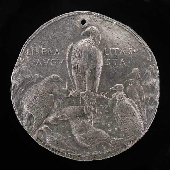 Perching「Eagle And Lesser Birds Of Prey In A Rocky Landscape [Reverse]」:写真・画像(3)[壁紙.com]