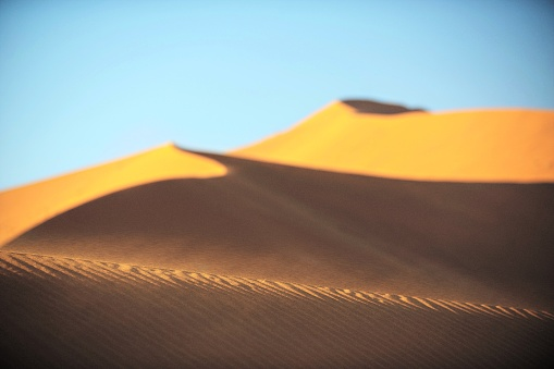 Kalahari Desert「Windy Sand dune」:スマホ壁紙(3)