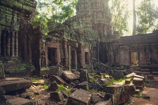 Ta Prohm Temple「An interior view of Ta Prohm Temple, near Angkor Wat, Siem Reap, Cambodia.」:スマホ壁紙(3)