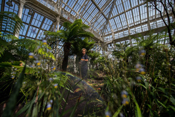 Newly Renovated Kew Garden's Temperate House Re-Opens To The Public:ニュース(壁紙.com)