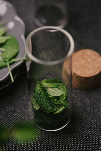 Disco Lights「Mint leaves fresh picked herbs saved and dried」:スマホ壁紙(11)