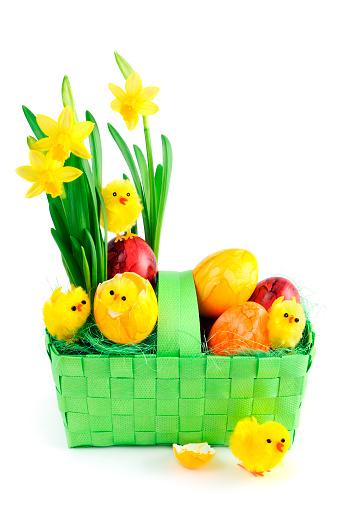 水仙「ダファデル、イースター卵と若いチキンのグリーンのバスケット」:スマホ壁紙(17)