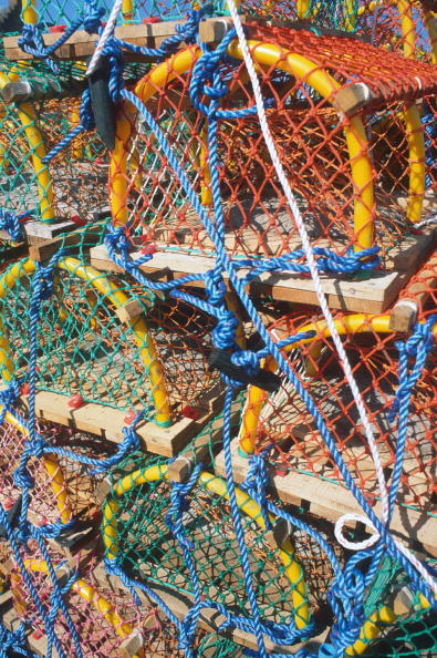 East「Lobster Fishing」:写真・画像(12)[壁紙.com]