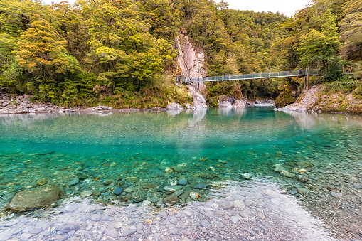 Mt Aspiring「Makarora River, South Island, New Zealand」:スマホ壁紙(11)