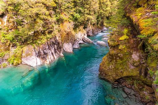 Mt Aspiring「Makarora River, South Island, New Zealand」:スマホ壁紙(14)