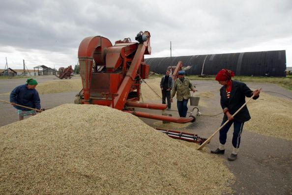 成長「Russian Village Struggles With Agricultural Economy」:写真・画像(14)[壁紙.com]