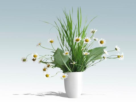 花「Daisies の花瓶」:スマホ壁紙(7)