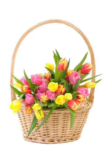 Easter Basket「Colorful Spring Tulips in a wicker basket Isolated on White」:スマホ壁紙(17)