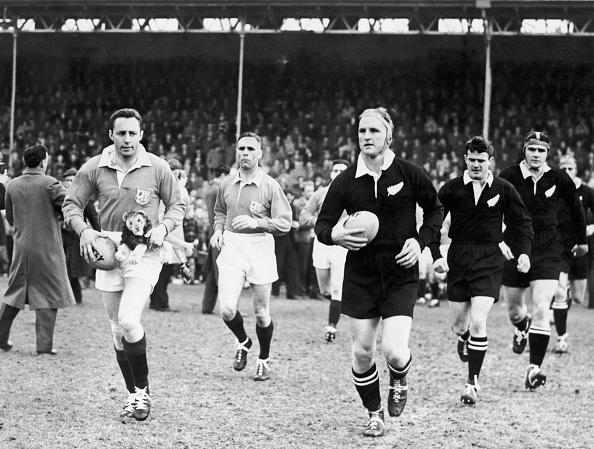Lion - Feline「Rugby First Test」:写真・画像(12)[壁紙.com]