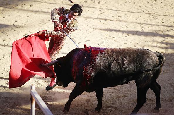 Baja California Peninsula「Dwindling Sport Of Bullfighting Still Draws Crowds In Tijuana」:写真・画像(13)[壁紙.com]