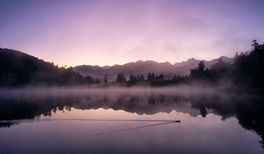 Westland - South Island New Zealand「Mirror-like Lake Matheson In New Zealand」:スマホ壁紙(5)
