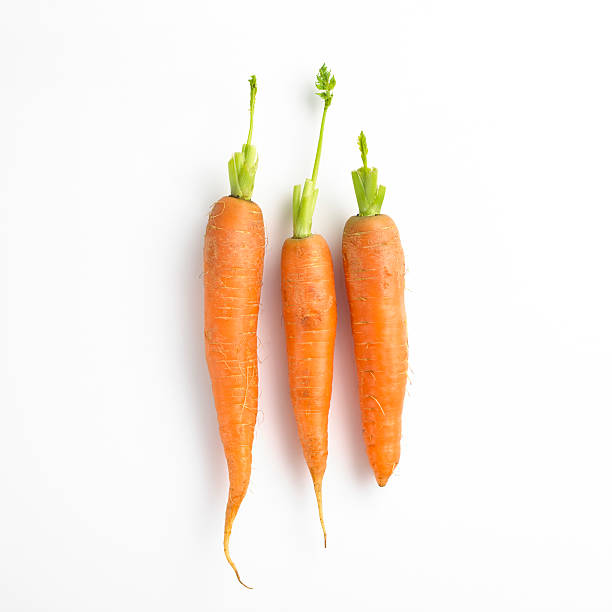 Three carrots in a row:スマホ壁紙(壁紙.com)