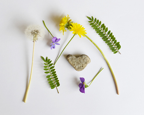 たんぽぽ「Collection of wildflowers, ferns and heart shaped rock」:スマホ壁紙(15)