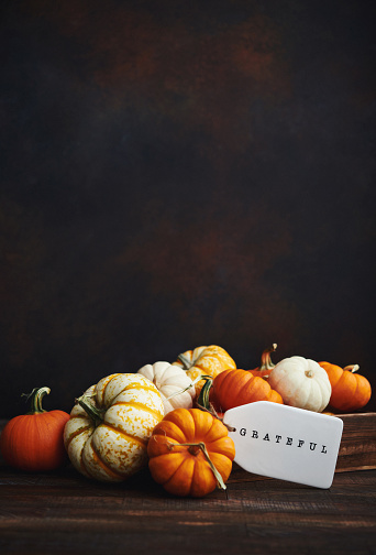 Miniature Pumpkin「Collection of miniature pumpkins in wooden crate with GRATEFUL message for Fall and Thanksgiving」:スマホ壁紙(10)