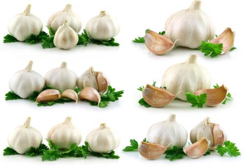 Garlic Clove「Collection of Garlic Vegetable with Green Parsley」:スマホ壁紙(14)