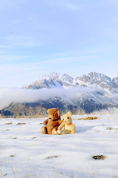 Two bears on holiday in the French Alps:スマホ壁紙(壁紙.com)