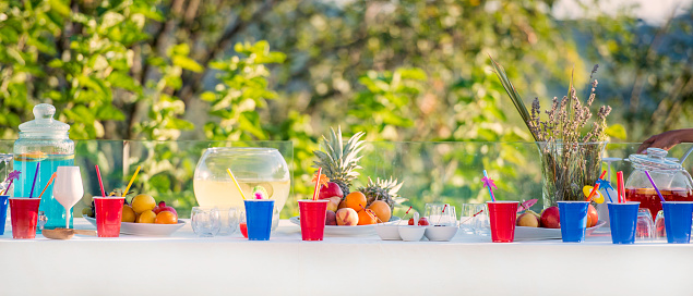 Picnic「Outdoor party table」:スマホ壁紙(9)