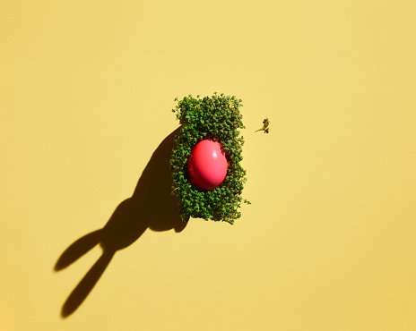 Easter「Pink Easter egg on cress with shadow of bunny ears」:スマホ壁紙(12)