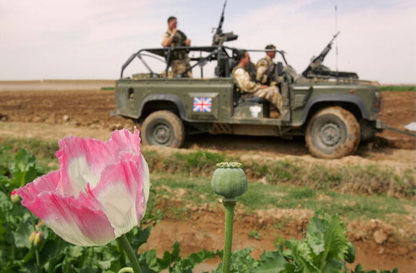 Opium「British Troops Secure Helmand Province In Southern Afghanistan」:写真・画像(18)[壁紙.com]