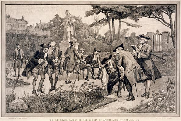リラクゼーション「The Old Physic Garden Of The Society Of Apothecaries At Chelsea 1750' 1890」:写真・画像(19)[壁紙.com]