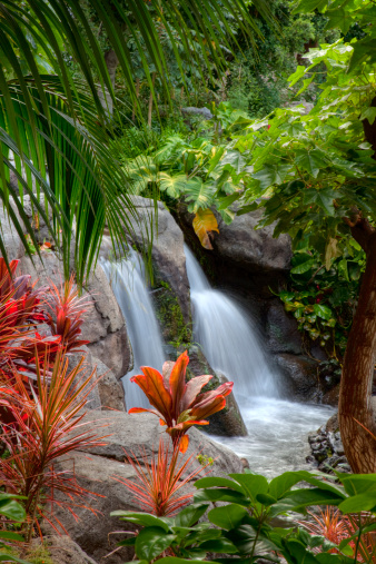 Waterfall「Waterfall on the Big Island of Hawaii」:スマホ壁紙(1)