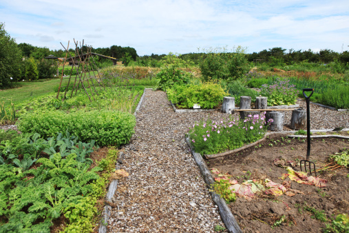 Ornamental Garden「Large rural organic garden with vegetables and flowers」:スマホ壁紙(8)