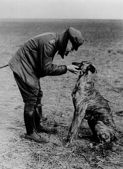 Spencer Arnold Collection「Von Richthofen」:写真・画像(19)[壁紙.com]