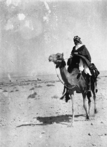 Arabia「Lawrence Of Arabia」:写真・画像(19)[壁紙.com]