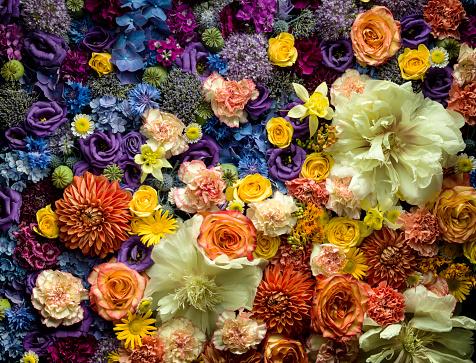 Floral Pattern「Detail of cut flowers」:スマホ壁紙(14)