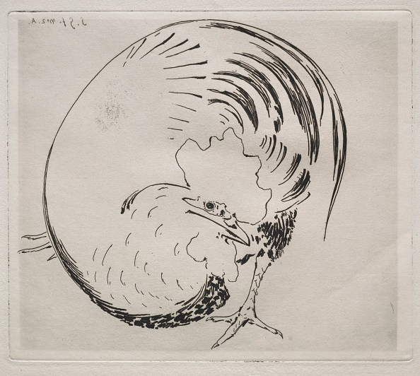 Etching「The High-Fired Service: Rooster」:写真・画像(11)[壁紙.com]