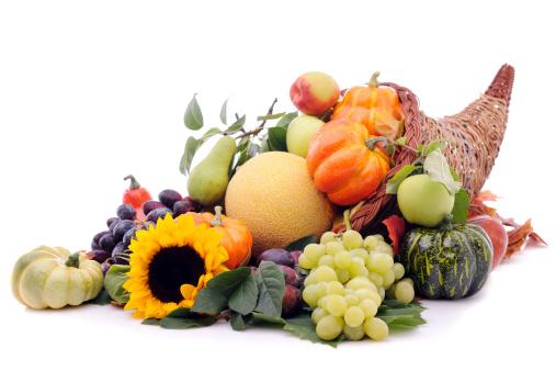 Cornucopia「Cornucopia with pumpkins and fruits」:スマホ壁紙(18)