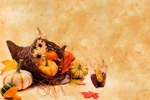 Indian Corn「Cornucopia on Texture Background」:スマホ壁紙(6)