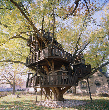 St「Tree House in St. Louis Park」:スマホ壁紙(5)