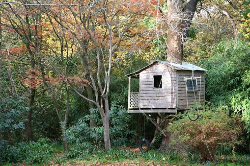 Fort「Tree house」:スマホ壁紙(10)
