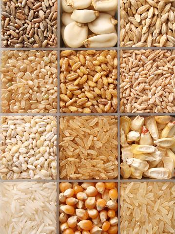 Brown Rice「Cereal grains」:スマホ壁紙(18)