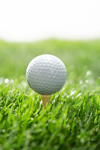 ゴルフ「Golf」:スマホ壁紙(10)