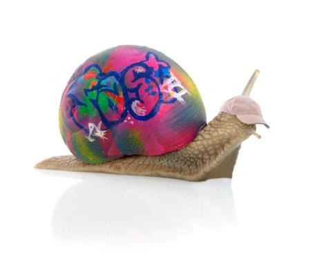 snails「Grafittisnail」:スマホ壁紙(2)