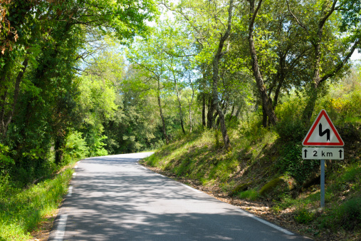Avenue「Bend on Country Road in France through Green Wood」:スマホ壁紙(9)