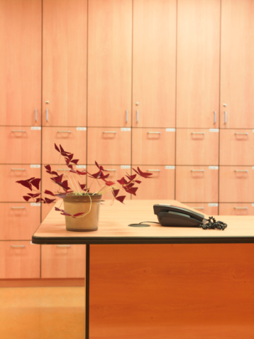 Hotel Reception「Plant and telephone on reception desk」:スマホ壁紙(8)