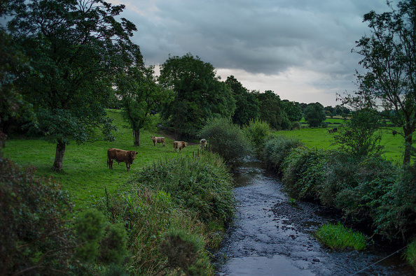 County Donegal「Irish Borderlands: The Rivers, Roads And Hedgerows Bedeviling Brexit」:写真・画像(3)[壁紙.com]