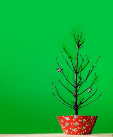 Burnt「Burnt Christmas Tree」:スマホ壁紙(7)