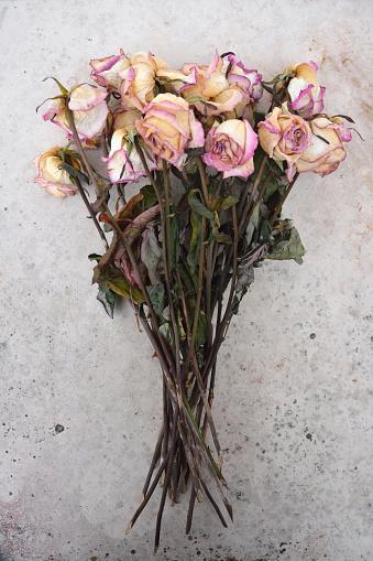 バラ「Withered bunch of roses on a grey stone slab」:スマホ壁紙(0)