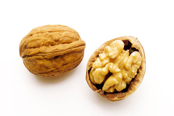 Walnut in nutshell:スマホ壁紙(壁紙.com)