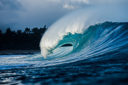 Surfing「Wave breaking on the reef along the shallow waters, North Shore, Hawaii」:スマホ壁紙(8)